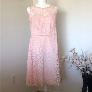 Pink Fit and Flare with Lace Overlay